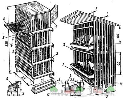 клетки для куриц