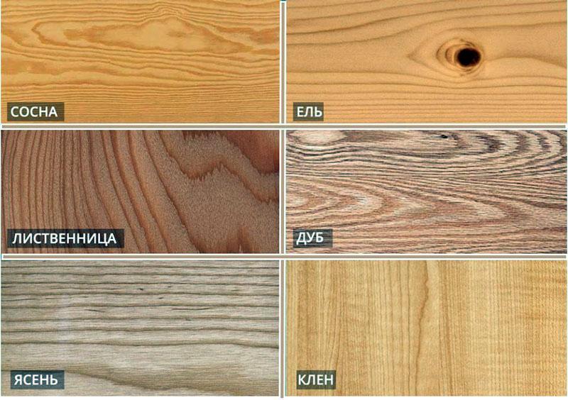 Разновидности древесины для бани