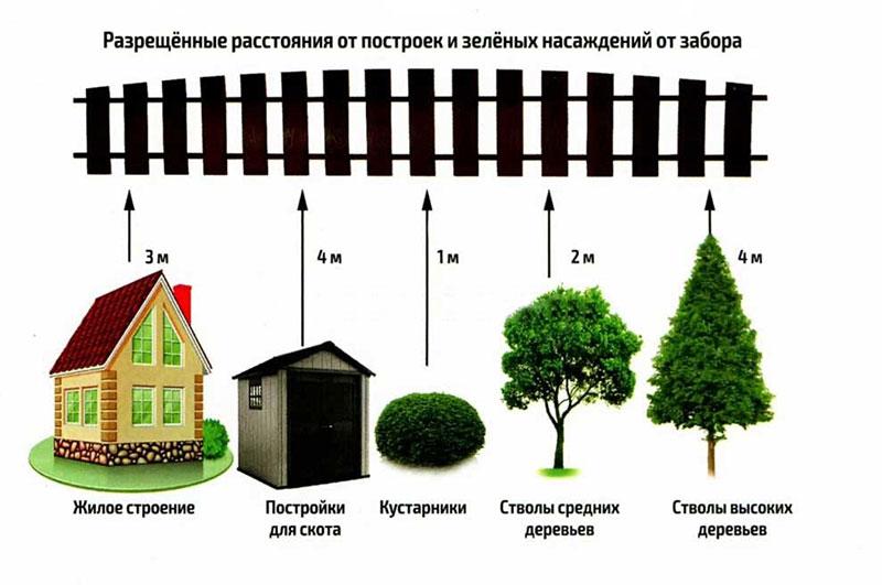Расстояния между постройками и деревьями (кустарниками)