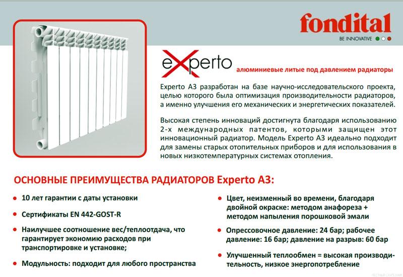 Итальянский радиатор Experto 3