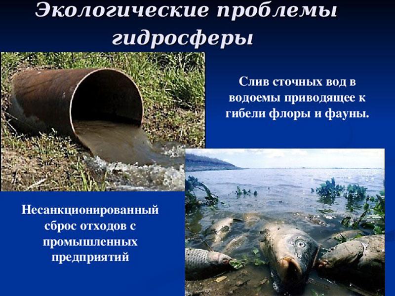 Экологические проблемы водоемов
