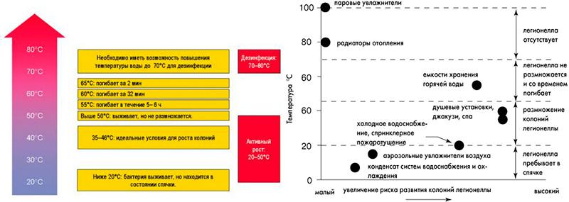 Температурный график размножения легионеллы